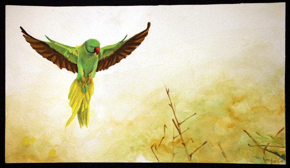 flying_parrot